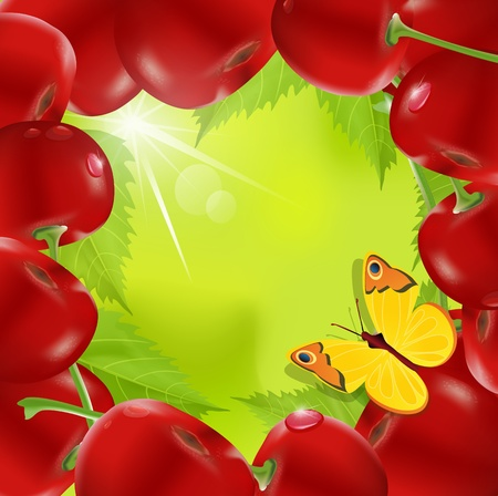 frame made of cherry with a butterfly on a green background Vector