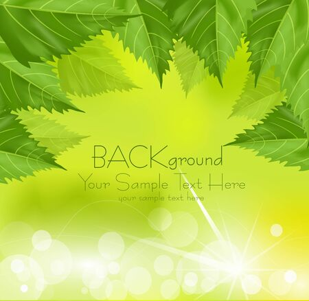 frame of green leaves on a green background with the sun Stock Vector - 9817941