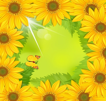 frame of sunflower with a butterfly on a green background Vector