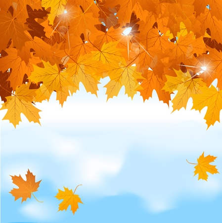 autumn leaf frame: Vector red maple leaves on blue sky background