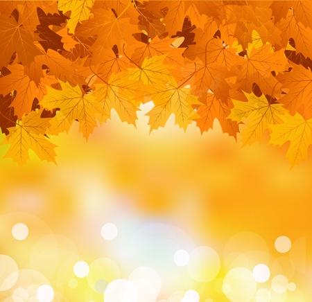 background herfst: Vector Herfstbladeren op een heldere zonnige achtergrond Stock Illustratie