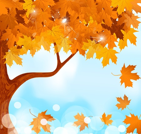 vector autumn tree maple leaves against the blue, bright sky Vector