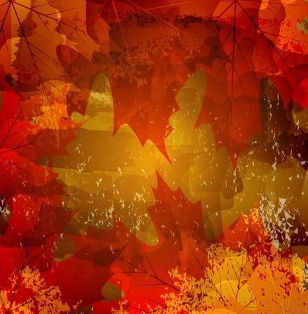grunge background with autumn maple leaf Vector