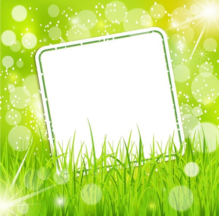 abstract background with a bright greeting card in the grass Stock Vector - 10049577