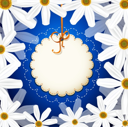 greeting card with a white daisies on a blue background Vector