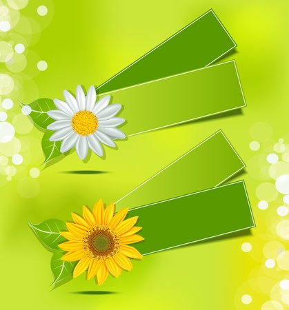 leafy label with daisies and sunflowers on a lush green background Vector