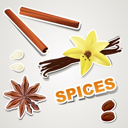 vector set stikers : spice Vector