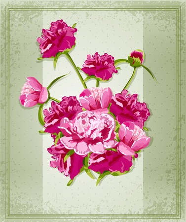 vector holiday greetings with Peonies Vector
