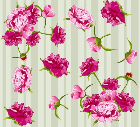 Vector peonies, seamless background Vector
