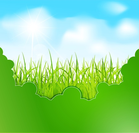 Spring banner with grass against the blue sky Stock Vector - 10996103