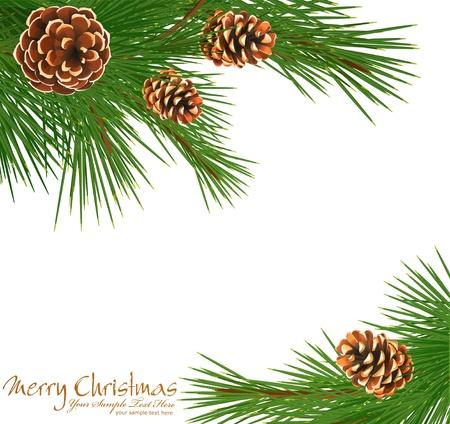 arbol de pino: con fondo festivo abeto verde y piñas Vectores
