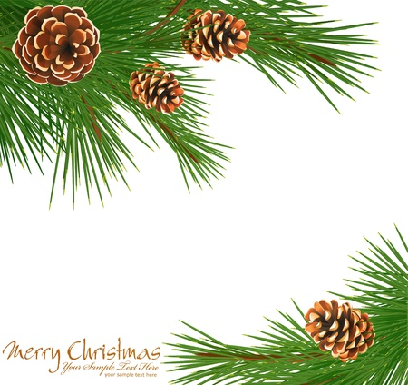 festive background with green spruce and pine cones Vector