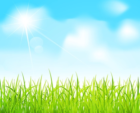 sunlight sky: blue sky and green grass