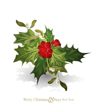 vector christmas background with sprig of European holly  (Ilex aquifolium) and white  mistletoe