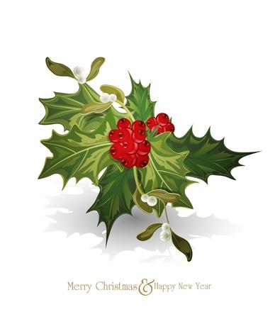 muerdago: vector navidad fondo con una ramita de Europa acebo (Ilex aquifolium) y el muérdago blanco Vectores