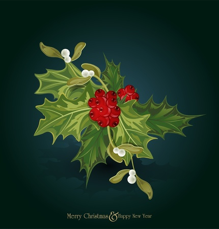 vector christmas background with sprig of European holly  (Ilex aquifolium) and white  mistletoe Vector