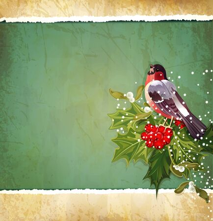 vector vintage Christmas background with holly and bullfinch Vector