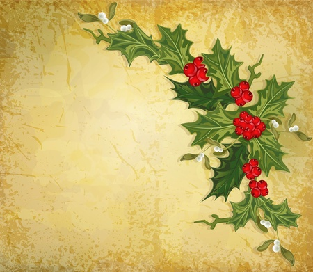 holly: vector vintage christmas background with sprig of European holly