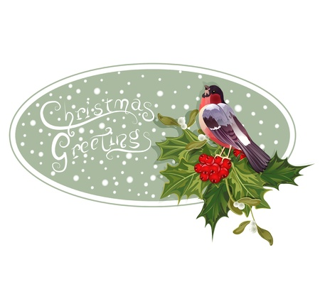 vintage Christmas background with holly and bullfinch Vector
