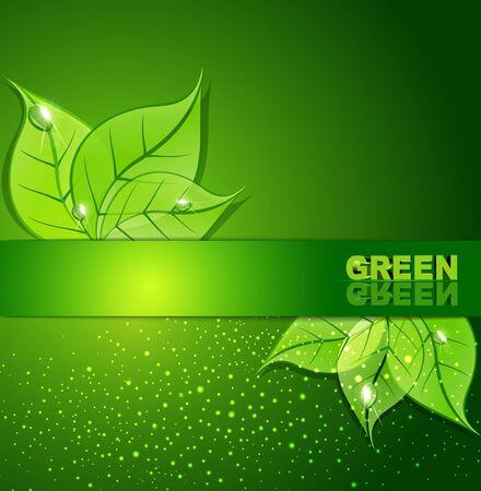 grünen Hintergrund mit Blättern und Tautropfen