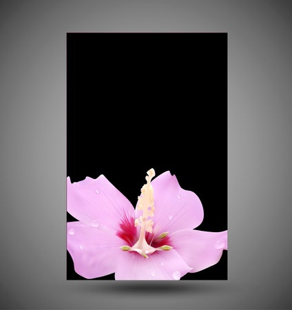 greeting card with a pink flower and drops of dew on a black background Vector