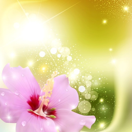 with pollen: abstract background with a delicate flower and radiance