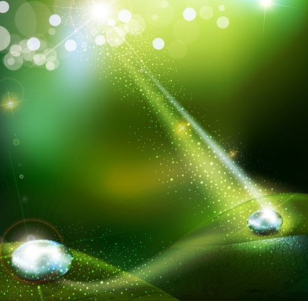 green  background with  with a drop of dew Vector