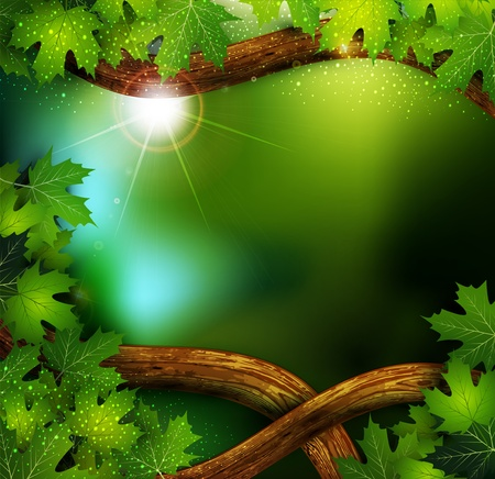 vector background of the mystical mysterious forest with trees and leaves Vector