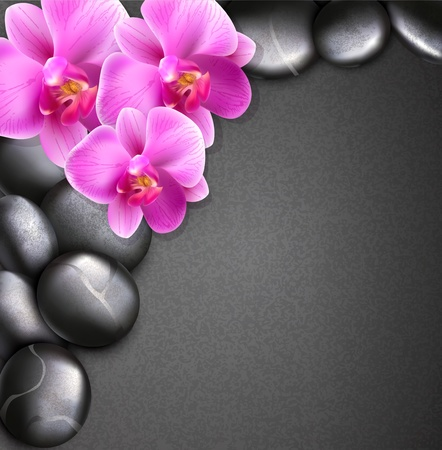 vector spa background with stones and orchids Vector