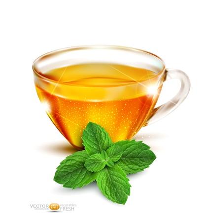 aromatique: Vecteur tasse de th� avec les feuilles de menthe sur un fond blanc