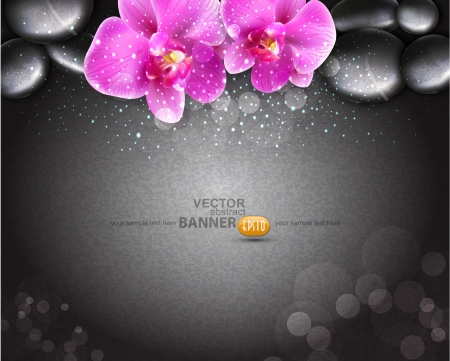 spa stones: romantic background with two orchids