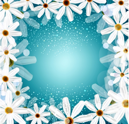 congratulation background with daisies Stock Vector - 17470864
