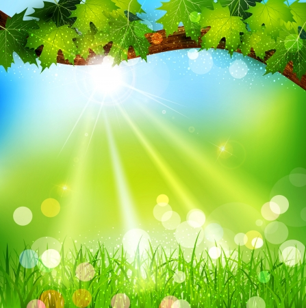 Vector spring background with trees and grass Stock Vector - 18083178