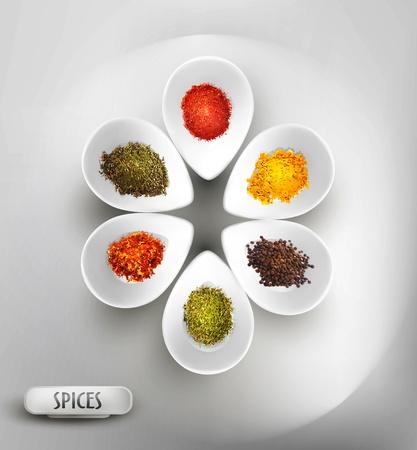 especias: vector de fondo con plato blanco sobre la mesa, el relleno de especias Vectores