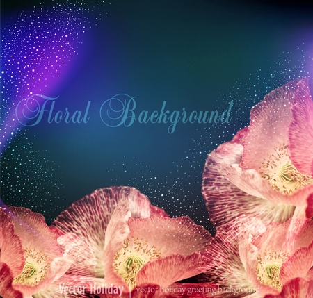 congratulation  background with poppies Vector