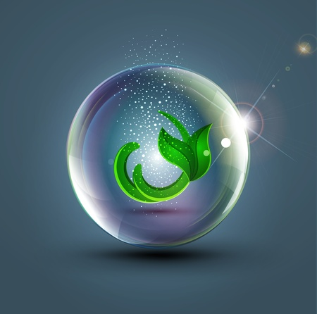glass ball with a leaf inside Vector