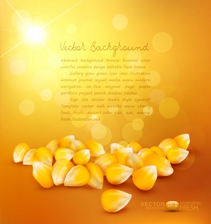 corn on a gold background Stock Vector - 20746954
