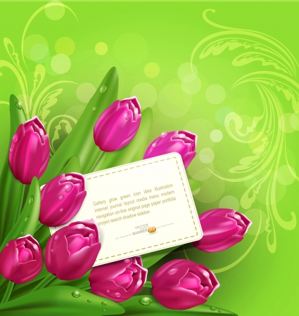 congratulatory background of tulips and card Stock Vector - 20747092