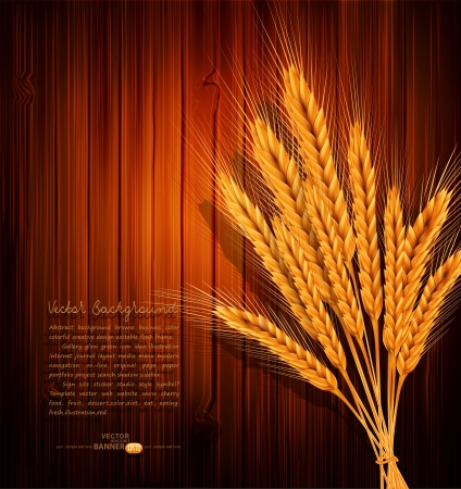 golden ears of wheat on the wooden background Stock Vector - 20747313