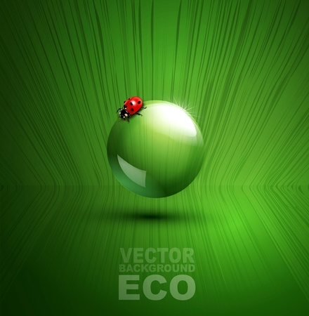element for ecological design with ladybug Stock Vector - 20747374