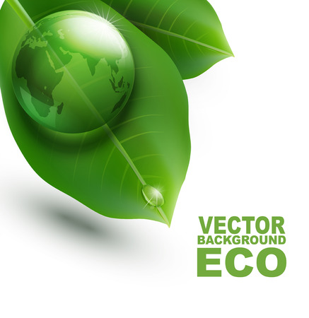 vector environmental element with transparent green ball-globe and leaves on a white background Vector