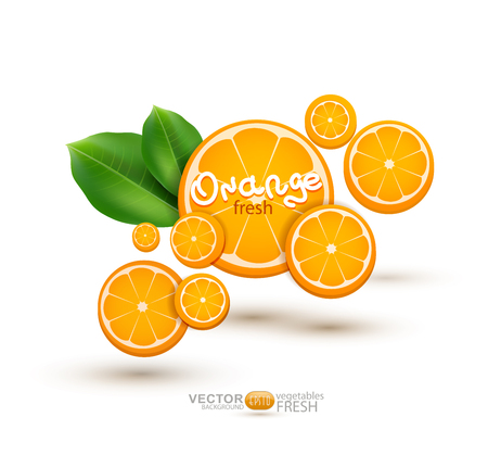 lemon tree: vector illustration with oranges