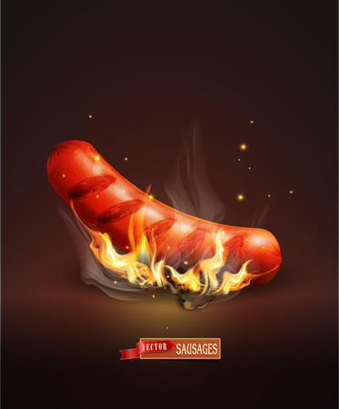 Vector sausage roasted on coals and fire on the dark background