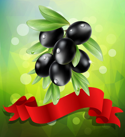 black olive: vector black  olive branch with red ribbon on a green background with bokeh
