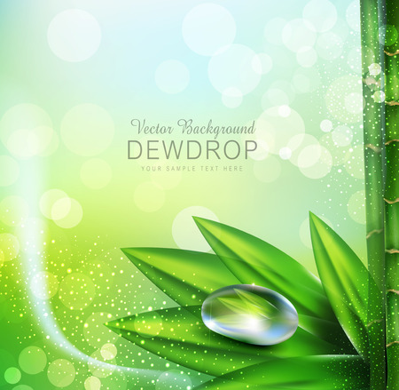 green leaves: Vector green background with leaves and dew drops
