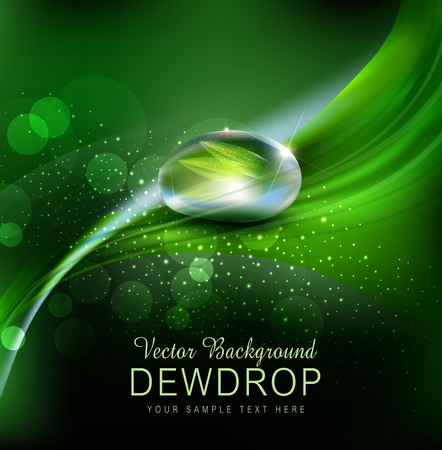 Vector green background with leaves and dew drops on the dark background Illustration