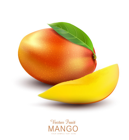 mangoes: Vector ripe mango fruit with slices, on a white background