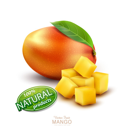 Vector ripe mango fruit with slices, on a white background