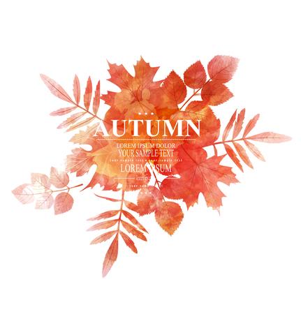 ベクトル、オレンジ、紅葉 (水彩画の模倣)