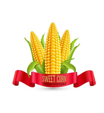 Vector maïs. Drie oor van maïs met bladeren en rood lint. Element voor ontwerp